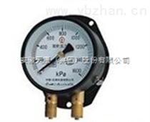 YZS-102YZS-102双针压力表