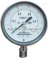 Y200 压力表 高压压力表