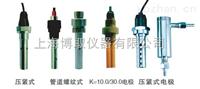 DJS-0.1型电导率电,在线电导电厂家