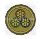 0.6/1kV隔氧层阻燃控制电缆