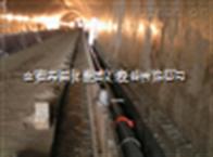 SC-SD隧道专用伴热电缆    安徽天康