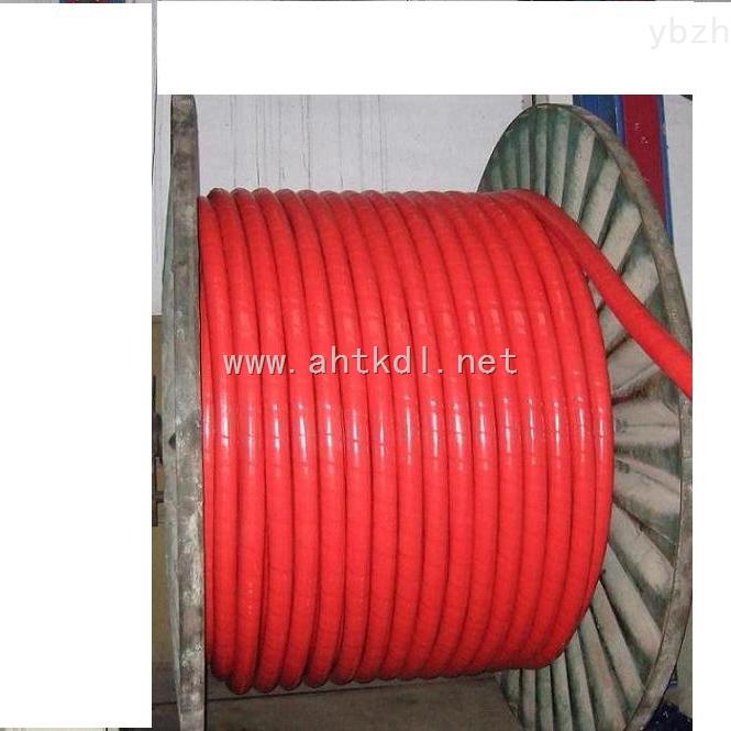 耐高温计算机电缆DJFGP2-3*2*1.5