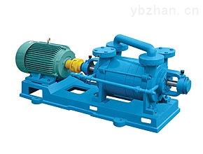 供应2SK-1.5真空泵,不锈钢两级水环真空泵,两级水环真空泵,真空泵原理