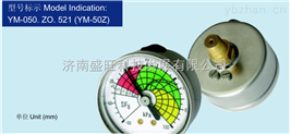 北京布萊迪(BLD)氣體密度計YM-50Z