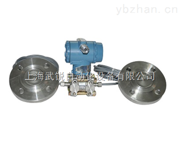 WRS3351DP双法兰液位变送器