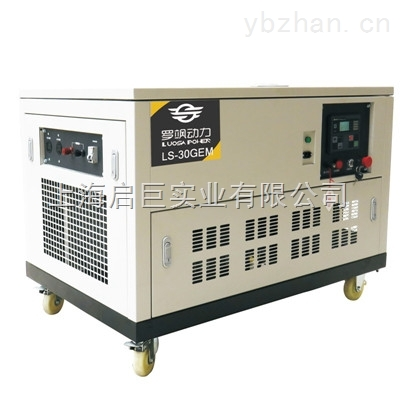 LS-30GEM箱式30KW汽油发电机