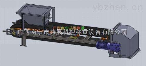 皮带秤-广西南宁市共展科控称重设备有限公司