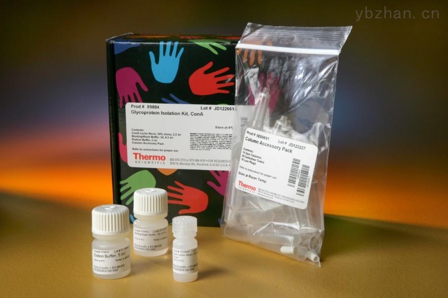 双调蛋白(AR)ELISA试剂盒