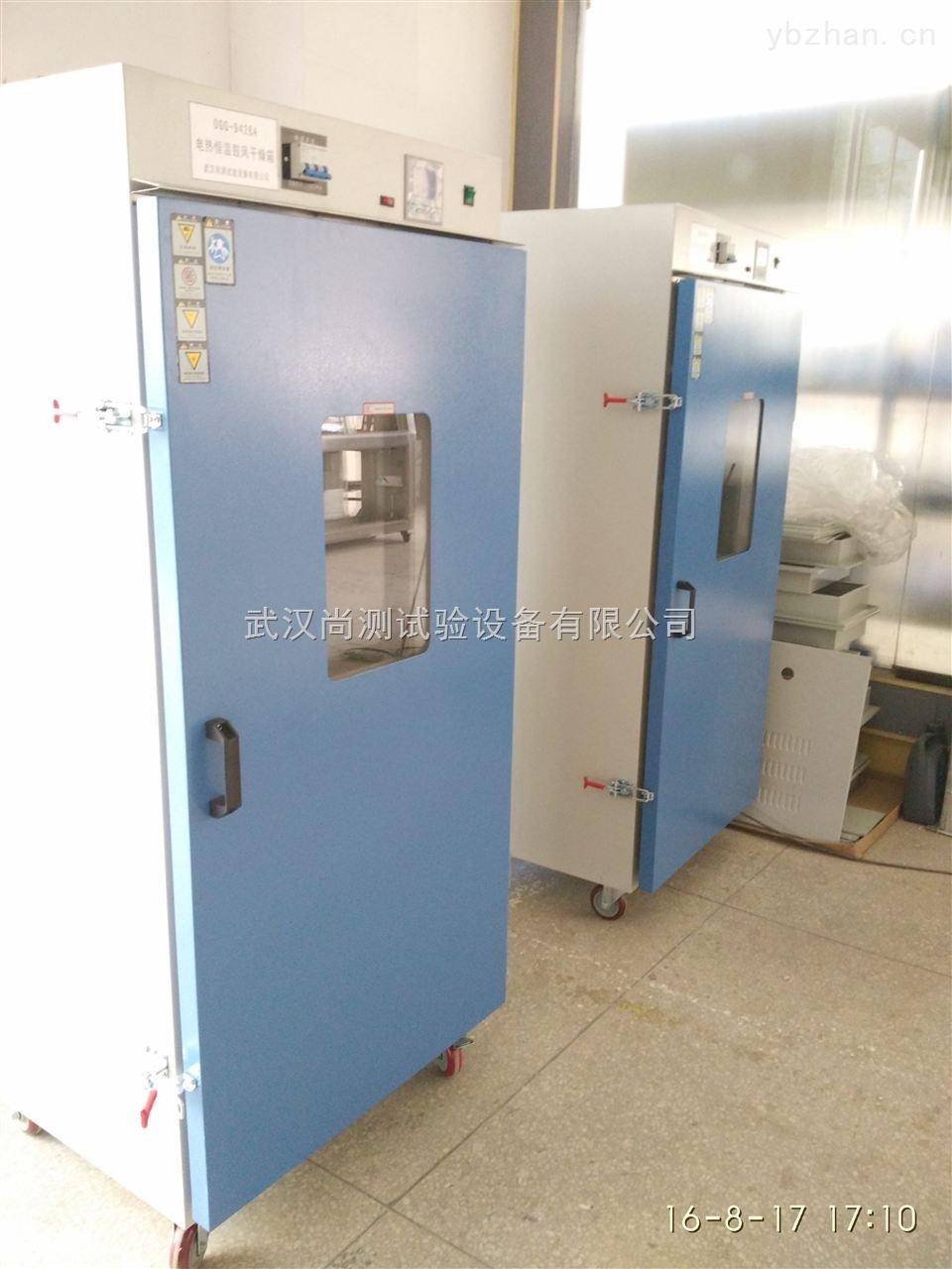 SC-DHG-9123A-大型立式烘箱