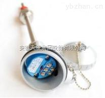 WZPJ-248一体化防爆热电阻