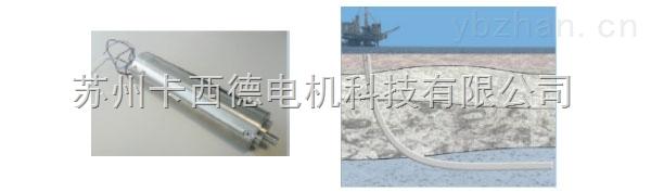 德国产可在200°C环境下工作的高温高压特种电机