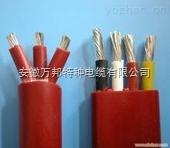 YGCB、YGCPB 硅橡胶扁电缆YGCB-F46R,YGCB-F46RP,YGCB-HF46R