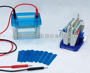 双板夹芯式垂直电泳仪(槽),电泳仪价格