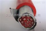 YGC22硅橡胶铠装电缆