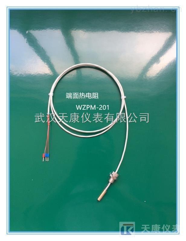 WZPM-201-PT100端面鉑熱電阻