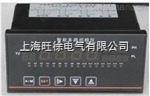 SR1000T-12多功能温度巡检仪低价
