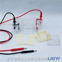 北京六一DYCP-31BN型琼脂糖水平电泳仪----西北总代理