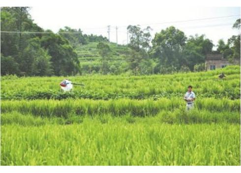 专访环保部邱启文:土壤环境监测要加强
