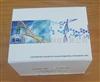 禽流感H9型荧光定量RT-PCR检测试剂盒